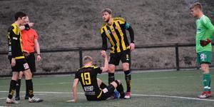 Niclas Håkansson och Herman Johansson har spelat ihop i det gulsvarta stället i många år.