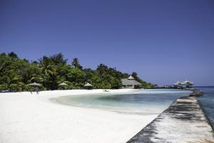 Värsta scenarierna är att haven stiger några meter, skriver Sansad. Foto: Feel4nature/Shutterstock.com