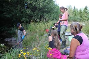 Tomas Schön och Emma Kvastegård från Länsstyrelsen visade hur det går till när man elfiskar.