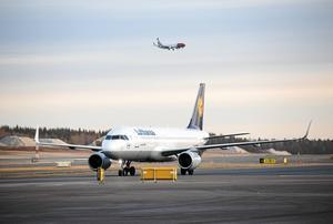 Om du kan, låt bli att flyga, skriver Solveig Samuelsen.