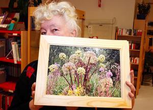 Även det vissna kan vara vacker tycker Margareta och visar här upp växter som blommat ut.