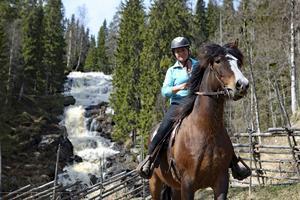 Marie Agerbrink har haft en passion för hästar ända sedan hon var liten. Nu lever hon drömmen och driver verksamhet vid Västanå.