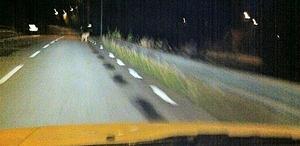 Filip Svenberg tog bilden från förarsätet i sin bil klockan 01.15 under natten mot söndagen.