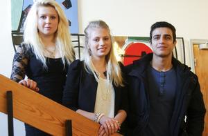 De vann Lilla Nobel. Gymnasieeleverna Ronja Salén, Jenny Wikman och Fardin Kedri skrev uppsatser som belönades med första pris.