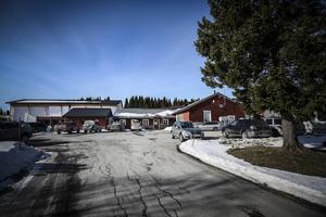 Ägarna till Lierne bakeri har beslutat att flytta produktionen till Ålesund i södra Norge.
