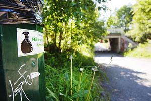 Det finns papperskorgar på cykelvägen mellan Hästhovsvägen och Myrbackaleden. Trots det är det många som inte plockar upp efter sina hundar där.