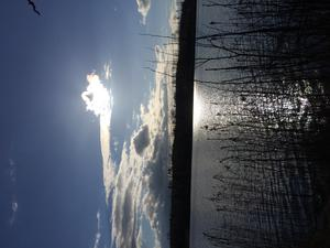 Solen värmer vid vattnet!