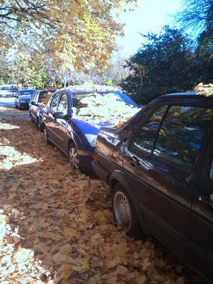 Hösten har definitivt kommit till Aspvretsgatan 16 oktober 2010