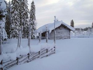 Visst är det fantastiskt med årstider. Harsavallen i januari. Foto: Ninni Låks