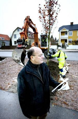 NYA TRÄD. Leif Liljeberg från tekniska kontoret är stolt över en lösning som gör att träden tar hand om det förorenade dagvattnet.