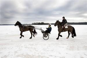 TRÄNAR PÅ SJÖN. Tomas Östlin och Lena Sjöström satsar brett inom hästnäringen på sin gård vid Valsjöns strand i Rörberg. Just nu är isen perfekt för träning med nordsvensken Linda Kavat som har förhoppningar på sig inför torsdagens lunchtrav i Gävle. En seger där skulle ge 20 000 kronor  i kassan. Lena tränar monté, trav på hästryggen, med sin Spear No Spences.