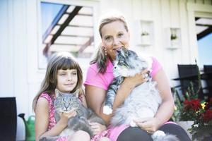 """Familjen har tre egna katter, en för varje barn. Lova, åtta år, har hand om Missy. """"Hon är inte tjock, hon är bara fluffig"""", säger Lova bestämt, även om Eva hävdar motsatsen. Morris är familjens innekatt."""