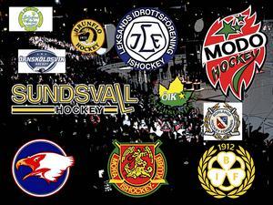 Deadline Day är över - här ser du alla övergångar i SHL, Hockeyallsvenskan och Hockeyettan.