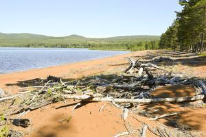Effekter av sjöns reglering.