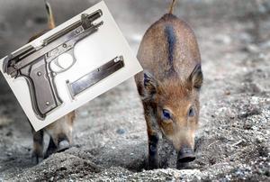 Gaspistolen på bild är inte samma som i artikeln. Montage: Niklas Sundin / Ingvar Karmhed (TT)