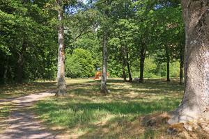 Tidigare i år beslutade kommunfullmäktige att inrätta Stocksätterskogens naturreservat i norra Hallsberg. Torsdag 23 augusti blir det högtidlig invigning. Foto: Rode Gradin /Arkiv