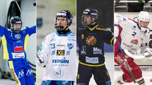 Nässjö, Motala, Falun och Kalix gör upp om två elitserieplatser. Bild: Arkiv.