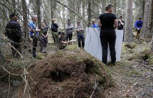 Grupperna hade olika lösningar på problemen som uppstod när granskogen på den mjuka marken skulle planeras för avverkning.