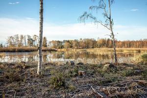 Stor sjötomt. Foto: Svensk fastighetsförmedling