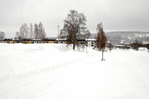Vid Midälvaplan där förskolan ligger planeras det för en ny idrottshall.