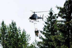 Naturvårdsverket vill ta bort ett par områden från den biologiska myggbekämpningen vid Nedre Dalälven. Foto: David Holmqvist.