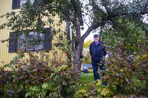 Det står tre äppelträd på tomten och Bengt Andersson säger att det ofta är barn där och tar äpplen.