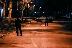 Polisen larmades om händelsen på söndagskvällen vid 19.45.