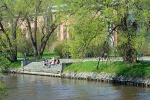 I Badhusparken är det många som valt att förlägga lunchen, alternativt vila benen.