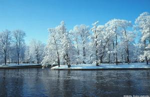 Vinter i Slottsparken 1982.
