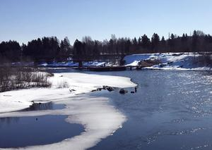 Nedre Ljungan har lämnat samarbetet Östersjölaxälvar i samverkan.