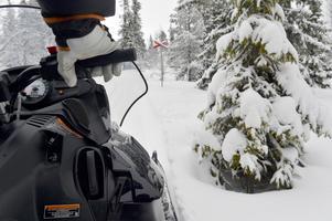 En snöskoter som följer en led i Lövåsen. Bilden har inget att göra med incidenten i Gåsvarv. Arkivbild tagen av Nisse Schmidt.