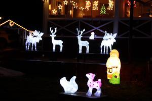 Renar, älgar, tomtar, hjärtan, ljus och stjärnor är några av de föremål som lyser upp trädgården.