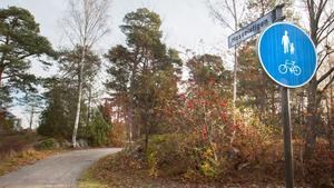 Tio belysningspunkter ska sättas upp på Hasselstigen i Nynäshamn, till en kostnad om 350 000 kronor. Den saken är inte längre en hemlighet.