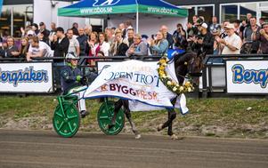 Ringostarr Treb vann prestigefyllda Sundsvall Open Trot.