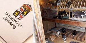 En man från Ockelbo brister med djurskötsel. Bilden är tagen vid ett annat tillfälle och har inget med innehållet i artikeln att göra. Bild: Arkiv/privat