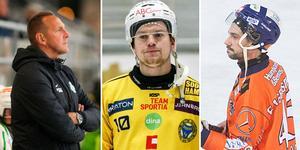 Ingen Martin Söderberg eller Christoffer Fagerström i den svenska landslagstruppen för den här gången, men båda är aktuella i framtiden.