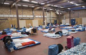 Menar Lennart Rohdin att Sverige skall stå färdigt med välfärdsresurser så att landet på 4-5 år kan ta emot 400 000 immigranter, frågar Peter Gerdman. Foto: Fredrik Sandberg, TT.