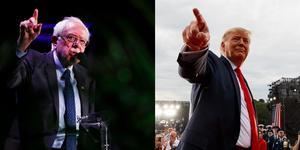 En slutkamp mellan de folkliga kandidaterna Bernie Sanders och president Donald Trump skulle vara intressant att se, skriver en demokrativän. Foto: Brynn Anderson/TT, Carolyn Kaster/TT