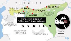 Turkiet vill skapa en så kallad buffertzon vid gränsen mot Syrien. De gör nu allt för att få bort kurderna från det området. Bild: TT