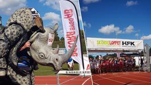 Över 500 löpare ställde upp i årets Skördelopp i Hedemora.Foto: Anna Stille