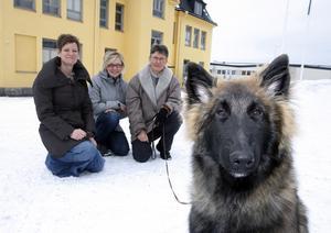 Veterinärerna Catarina Freskgård, Anna Mårtensson och Ingrid Boström satsar på en ny djurklinik i Östersund.