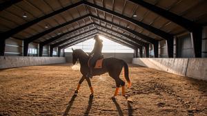 Evelina Johannisson har som yrke att rida och utbilda andras hästar. I snart tio år har hon haft sitt företag och numera har hon ett nybyggt ridhus att arbeta i hemma på Åby gård, utanför Hallstahammar. Ridhuset är synligt från gamla vägen mot Västerås.