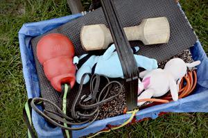 Det krävs utrustning och många leksaker när man ska träna.