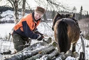 Timmerstockarna kan väga upp till 700 kilo styck.– Det lyfter inte ens Frank Andersson, skrattar Sture.