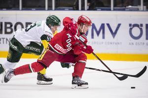 Tom Hedberg stannar i Modo över nästa säsong.  Bild: Erik Mårtensson/TT