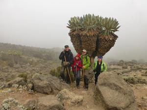 På väg ner från Lava Tower. På eftermiddagarna brukade ofta dimmor och regn svepa in berget. Johan, Petra, Mikael, Carina.