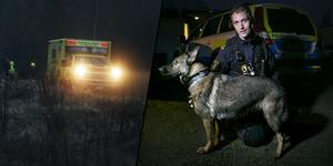 Fotomontage: Anton Ryvang/ Mikael Hellsten. Kvinnan kom gående på en skogsväg – Hundföraren Jonny: