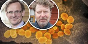 Anders Fällström, rektor vid Mittuniversitetet, och Håkan Wiklund, prorektor för forskning vid Mittuniversitetet, varnar för det heta tonläget i coronadebatten. Forskare kan skrämmas till tystnad.