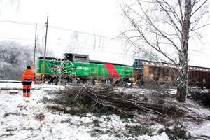 Avverkningen sker då träden annars stod för nära järnvägen.