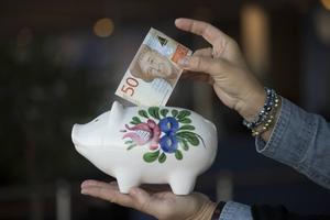 Det finns flera enkla spartips, för att minskar sina utgifter. Foto: Fredrik Sandberg/TT